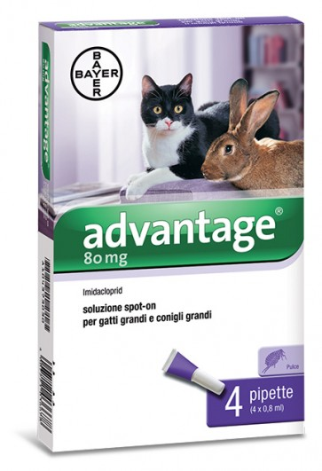 Advantage spot on antiparassitario 80 mg per gatti con peso oltre i 4 kg