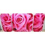 Quadro stampa digitale su legno 3 pezzi compositi rose 160x80x4 cm