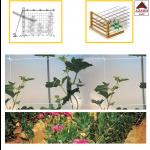Rete per rampicanti bianca sostegno fiori ortaggi piante h.200cm x 100m