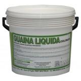 Guaina liquida resinosa grigia kg.20