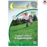 Semi prato tappeto erboso calpestabile kg 1 sementi dose per 40 mq