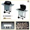 Barbecue a gas gpl pietra lavica 2 bruciatori BBQ Campigaz con coperchio 7 Kw